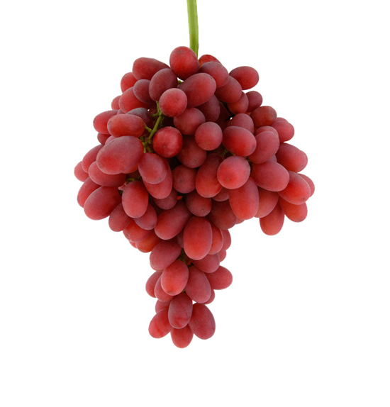 Crimson seedless | Raisin de table | ViticulturVignoble.fr