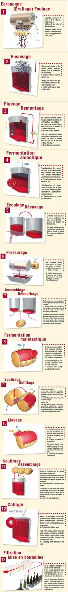 elaboration vin rouge